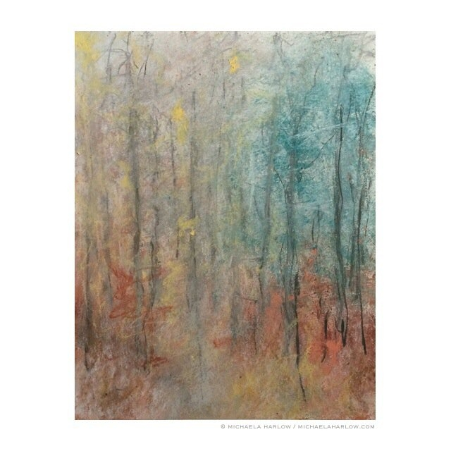 October Thicket, 2014. Charcoal & Pastel on Paper.